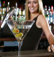 Bartender 101 Certification $288