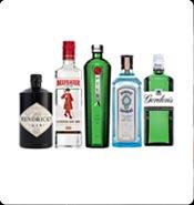 Master of Gin - $99