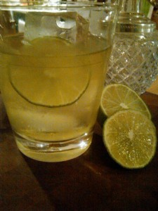 The Gimlet aka Gene Snyder on the rocks.